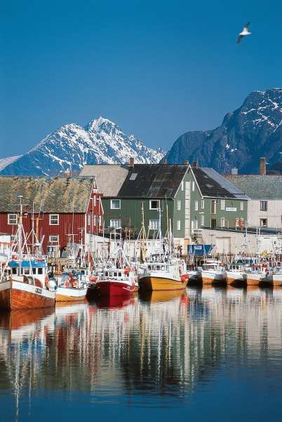 @lopez1853 ✯ Norge (Norway)- Fishing Village I want to live here! Ready to be somewhere with a view