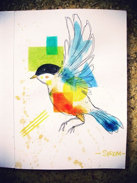 Pencilcolor Bird Illustration