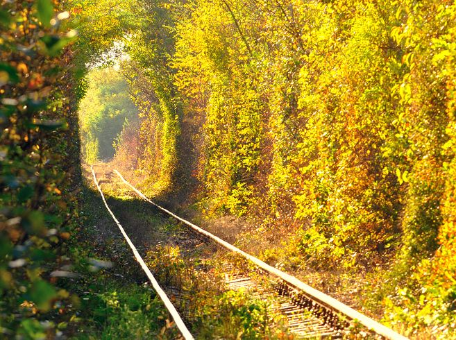 This railway engulfed in a tunnel of leaves is a Pinterest favorite and a Ukrainian hot spot for lovers. Although it's undoubtedly romantic, there is an active train that travels through the tunnel three times a day to deliver wood to a factory. Just beware of the train before snapping engagement photos!