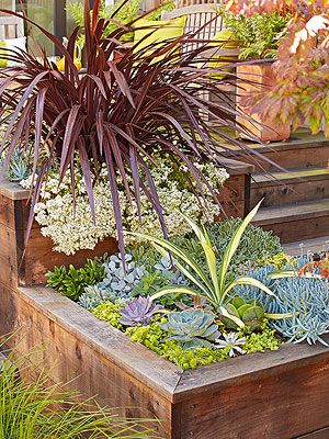 Spring is here and that means it's time to get busy with your container gardening! See how you can easily grow your own potted plants with these helpful tips and hints. These low-maintenance container gardens are easy and trendy.