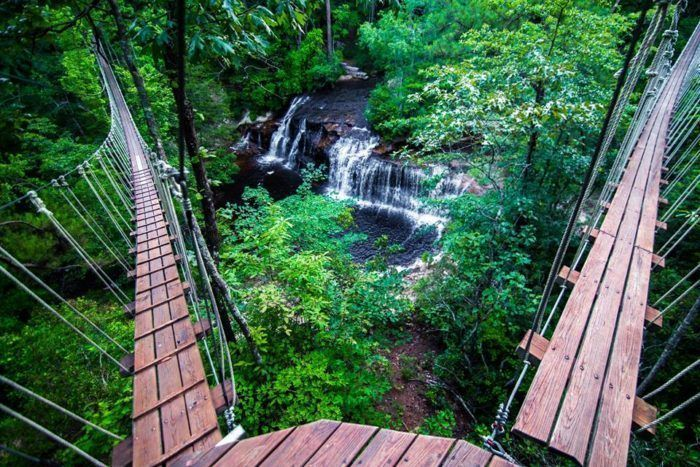 10 One Of A Kind Day Trips In North Carolina You'll Absolutely Love