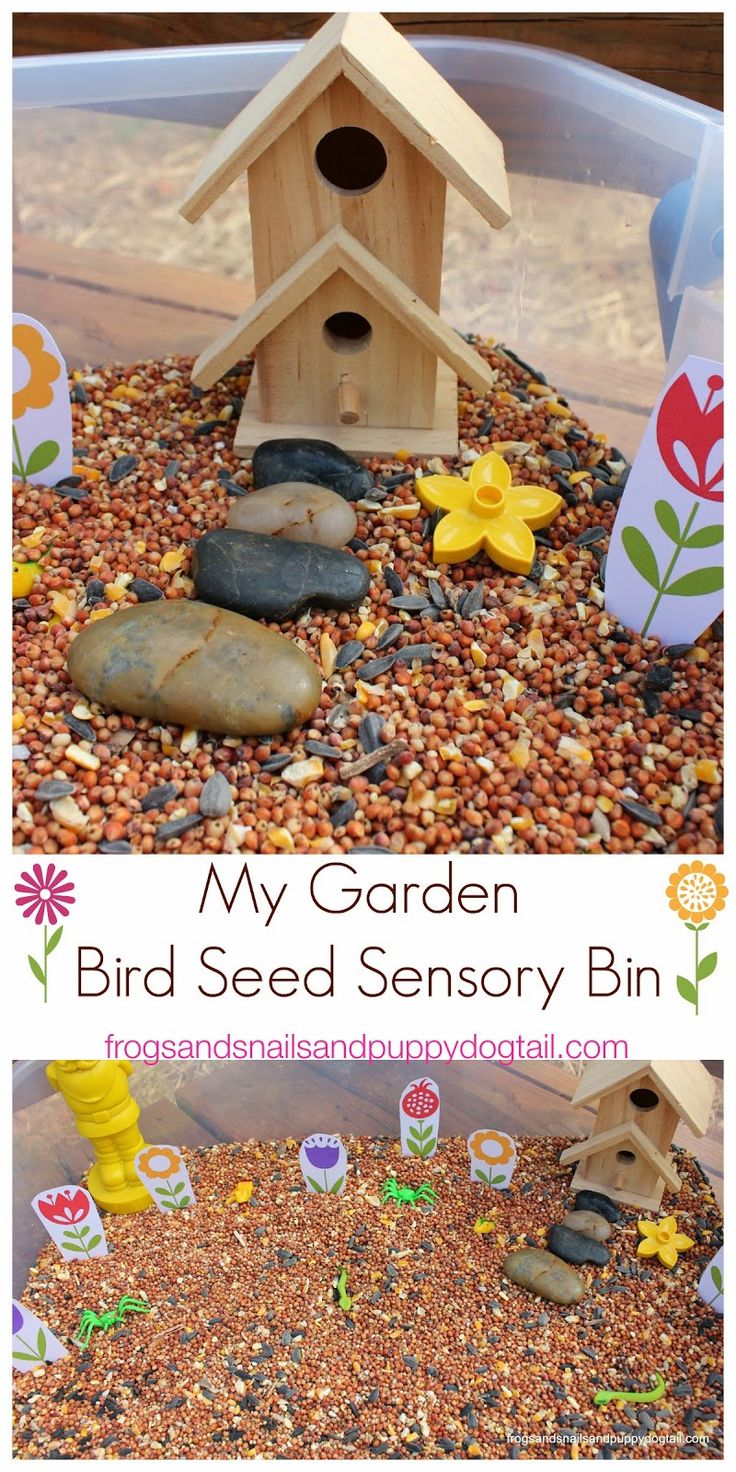 My Garden ~ Bird Seed Sensory Bin by FSPDT Hands on play for multi aged kids.