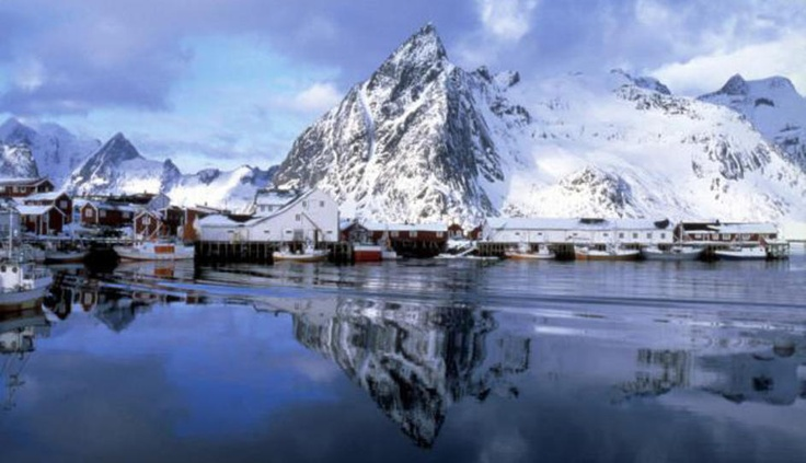 Seafood from Norway - great seafood recipes and info