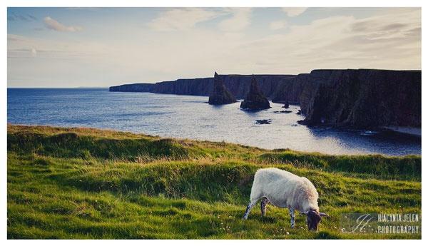 Фотографии Шотландии. Живописные пейзажи от Hiacynta Jelen
