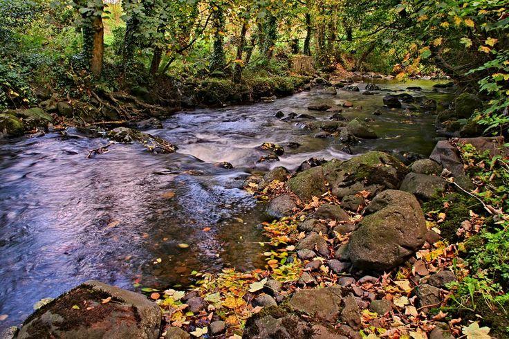 Glynn River