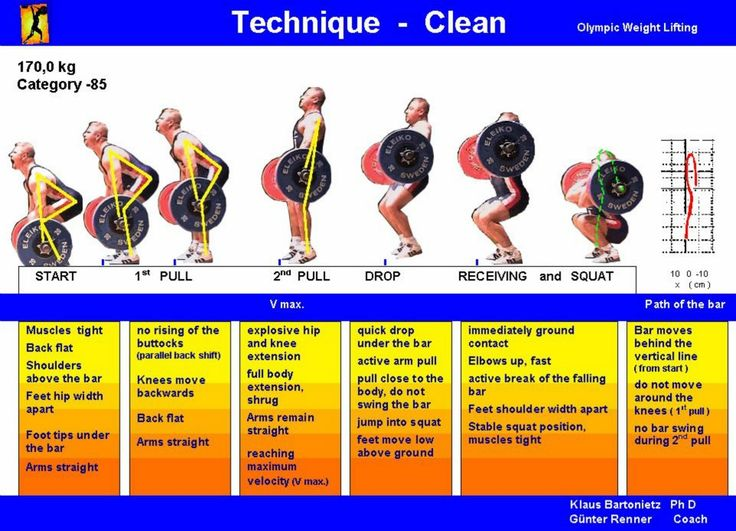 Blonyx - #Infographic - The Olympic Lifts: a Breakdown