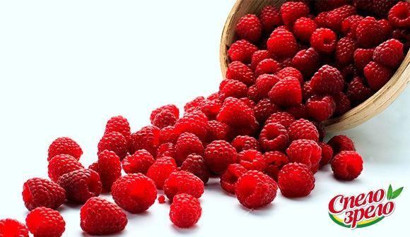 Польза малины. На сегодняшний день малина замыкает тройку лидеров в списке самых популярных ягод, уступая лишь клубнике и чернике. Давайте выясним, каковы польза и вред малины, включая такие продукты на ее основе, как компот, варенье, протертые с сахаром ягоды и т. п.http://www.spelo-zrelo.ru/poleznoe/svoistva/polza-i-vred-maliny/