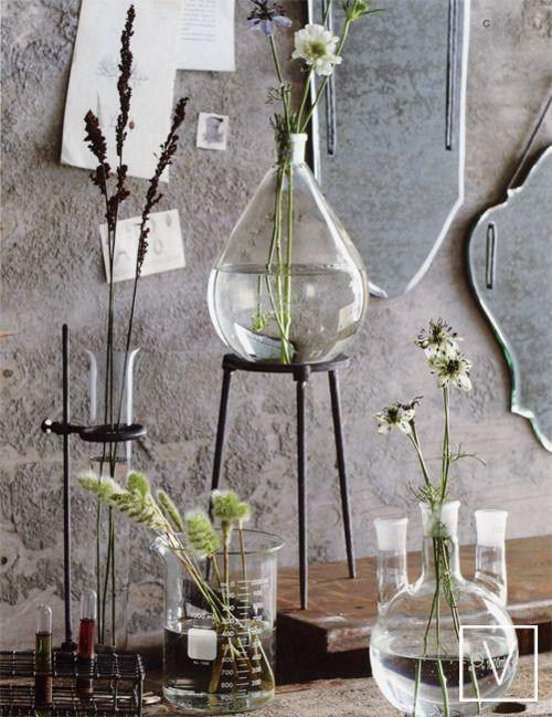 "Quand chimie et nature vont bien ensemble. ""When chemistry and nature go well together."" reblogged by L'Art de la Curiosité - Essential oils treatment : Ustensiles chimie/cuisine Bouteille Vase Flotter"