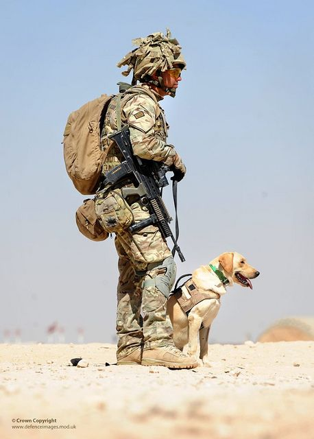 A soldier seconded to the 1st Military Working Dog Regiment from the 1st Battalion The Duke of Lancaster's Regiment is pictured with Military Working Dog 'Dinah' during a patrol base exercise in Afghanistan.