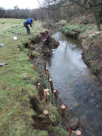 River Esk Volunteers - bank stabalisation