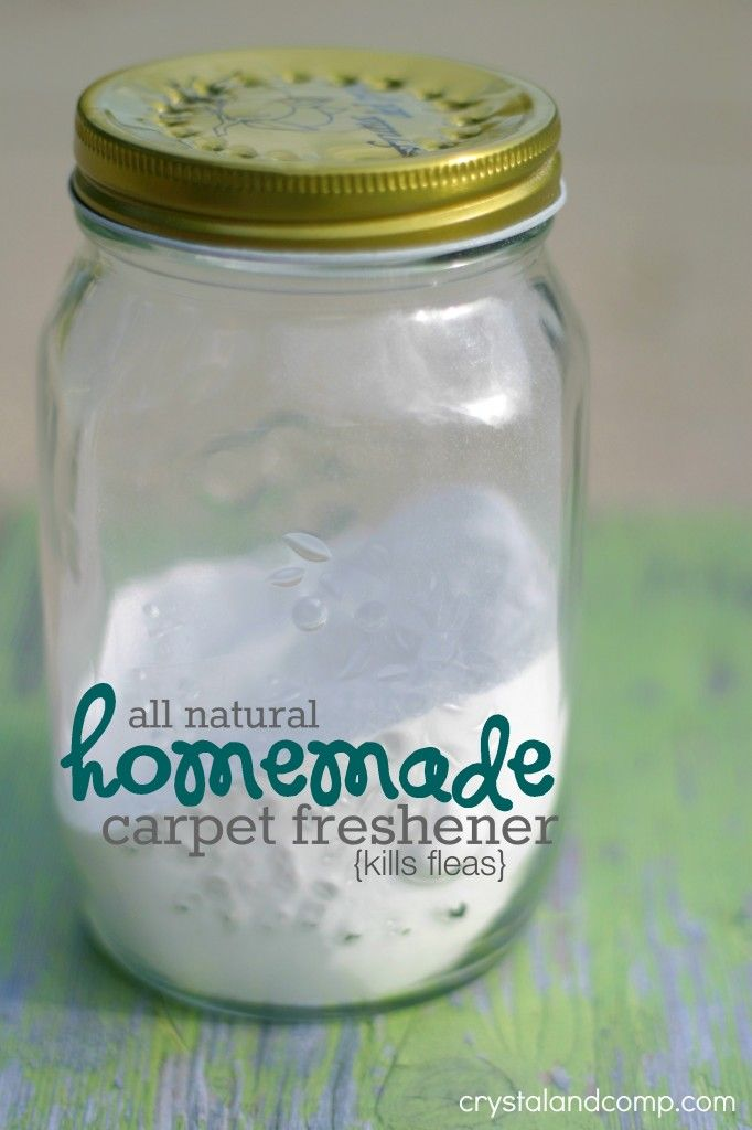 homemade carpet freshener that kills fleas (naturally!)