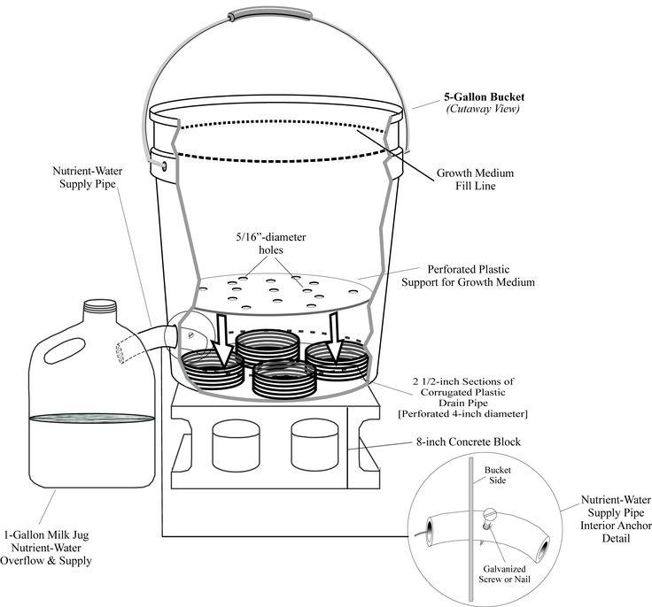 1000 images about 5 gallon buckets ideas ideas para - Self watering 5 gallon bucket garden ...