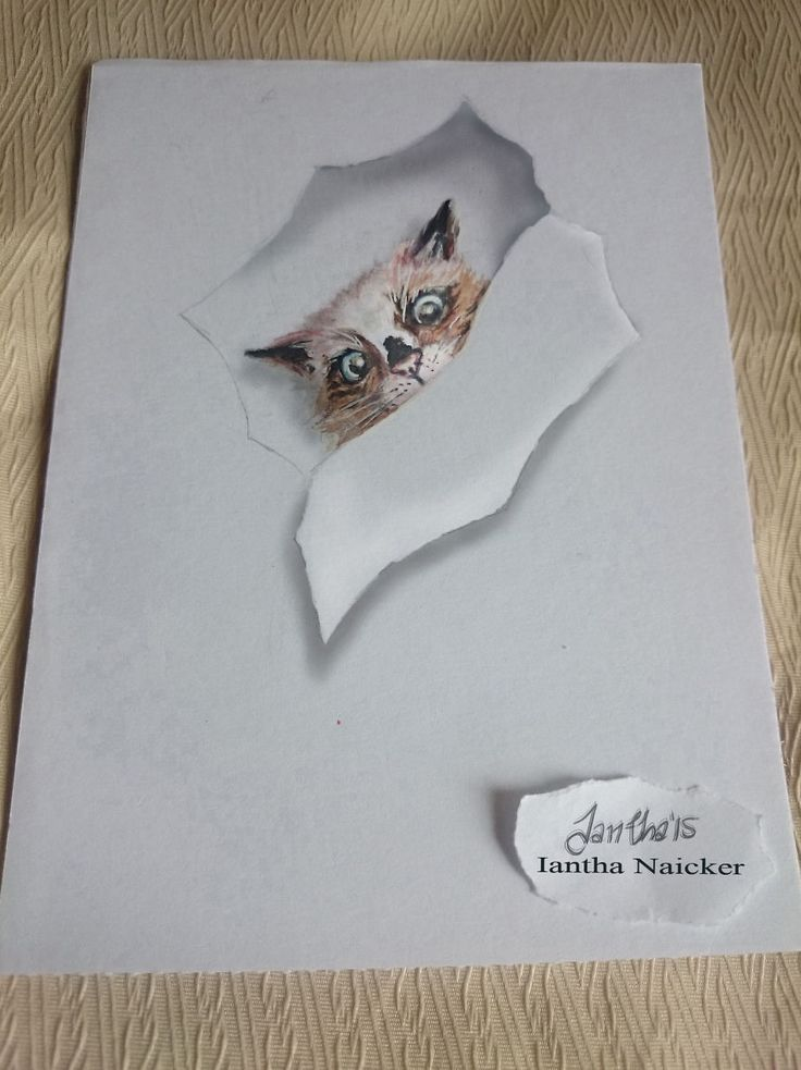 my animal drawings try to leap off the page iantha