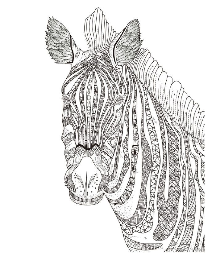 Zebra Coloring Pages For Kids In 2020 Zebra Coloring Pages