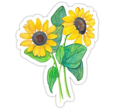 "tumblr stickers | Cute Sunflower Tumblr Drawing"" Stickers by sadeelishad 