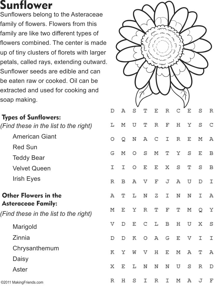 Sunflower Fact And Word Search Page Coloring Pages