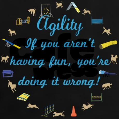 Dog Agility 'If you aren't having fun, you're doing it wrong' These words encircled by agility equipment should be posted at every agility event. Find these words on agility posters, shirts and more.