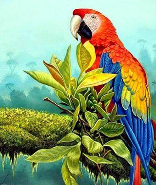 una pintura de una hermoso ave la paraba  :)