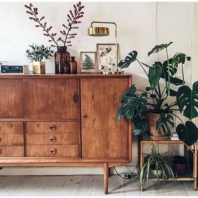 || mid century furniture + indoor plants || our heaven @littlegreenfingers
