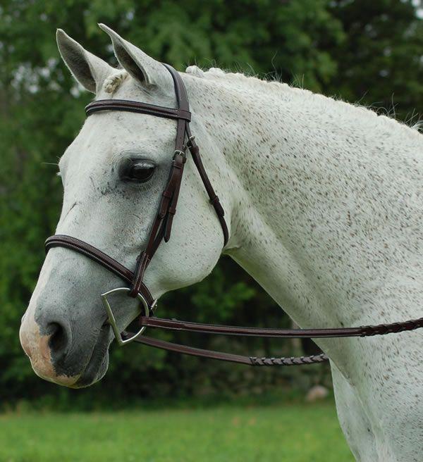 how to make horse fancy walk