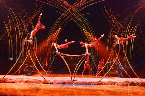 Cirque du Soleil: Amaluna