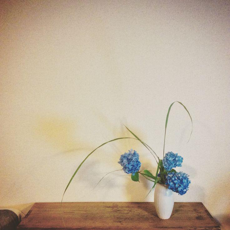 Container: Original container by Makoto Nakata  Material: Hydrangea and Japanese pampas grass    花器: 中田 誠創作花器  花材: 紫陽花、薄    #花 #いけばな #flower #ikebana #art #中田誠