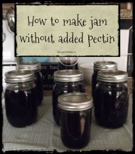 How to make jam without added pectin - The Organic Prepper