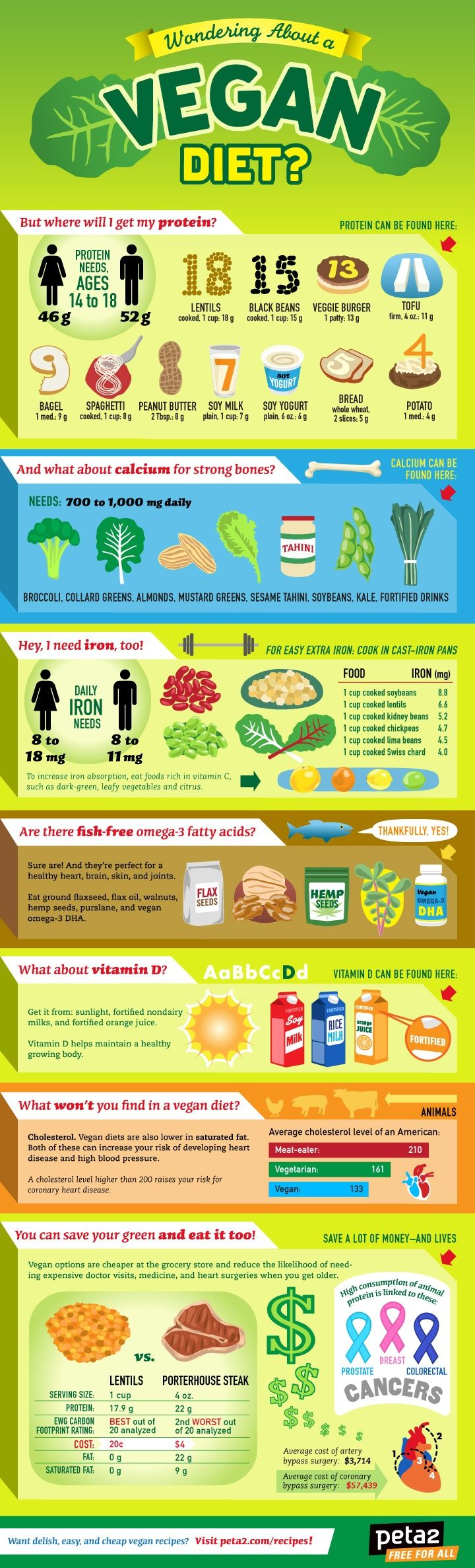 "Infographic: How to Go Vegan ""Curious about how to go vegan? We break it down for you with this simple, hip infographic."" ""Vegan diets need some thoughtful planning so you stay healthy, especially at the beginning when you are just getting started. Know the facts so you can be a good healthy example for anyone else looking to try a vegan lifestyle."" ""Don't forget to take a vitamin B12 supplement!"" and consider grain-free substitutes"