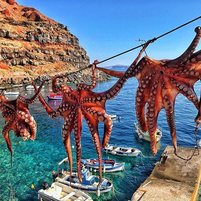 @TheGrubfather / Santorini, Greece   #santorini #greece .