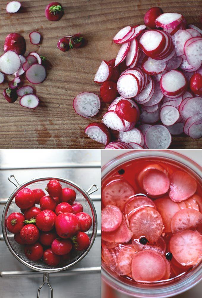 25+ bästa Quick pickled radishes idéerna på Pinterest