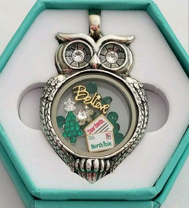 ORIGAMI OWL OLIVIA OWL MEDIUM CLASSIC LIVING LOCKET CHRISTMAS IN JULY CHARMS | eBay