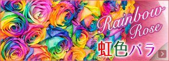 【楽天市場】10本のレインボーローズ花束☆誕生日やお祝い、記念日に年齢分の本数でプレゼント 薔薇/ばら/バラ花束/フラワーギフト/プレゼント/花 虹色 虹バラ:マミーローズ 楽天市場店