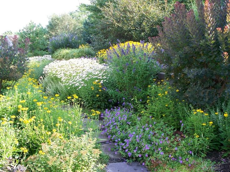 don't plant short to tall in back, vary the heights all over - traditional landscape by Dear Garden Associates, Inc.
