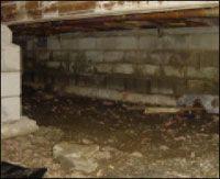 Fresh Dirt Cellar Basement