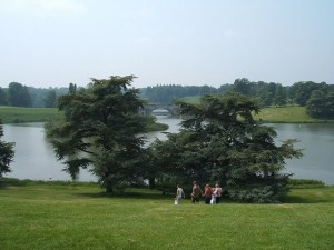 Blenheim, Oxfordshire, the landscape by Capability Brown; form a post about the savanna hypothesis in the environmental psychology