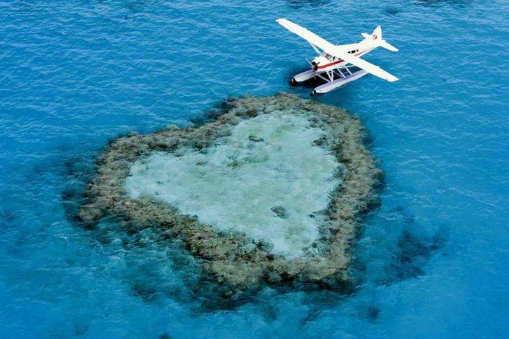 http://www.travelbook.de/welt/Herz-Inseln-Seevoegel-und-George-der-Barsch-Warum-man-Queensland-einfach-lieben-muss-620705.html