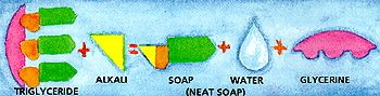 Best explanation ever of the chemical process of saponification that occurs when making soap.  All real soap is made with lye!