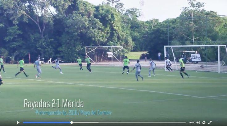 📹 [VIDEO] ¡Resumen del partido de #Rayados vs @venadosfc en la #PretemporadaRayada 2016! 👉 https://www.facebook.com/rayadosoficial/videos/1445925792101026/ …