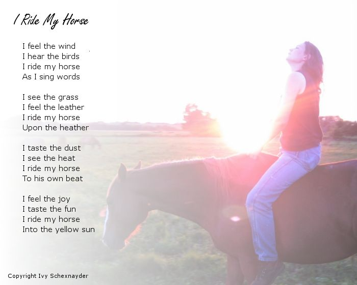 horse poems | Ivy's Horse Training, Free horse train tips