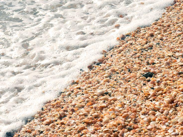 Leven in de oceaan - wallpapers: http://wallpapic.nl/oceaan-en-zee/leven-in-de-oceaan/wallpaper-10326