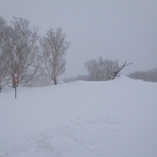 Another snow day in Niseko... 4 metre base on the mountain and more coming.