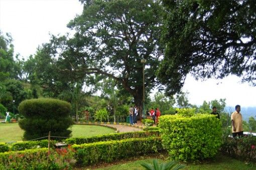If you searching for a honeymoon destination in India then nothing is best than Coorg. So get romantic Coorg 3N/4D packages from Chennai offered by MadrasTravels.