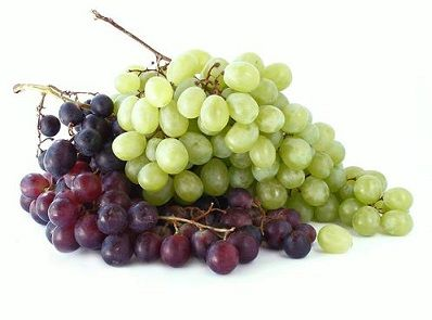 L'uva bianca e rossa, proprietà e benefici di un frutto che contiene sostanze…