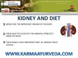 Image result for kidney treatment in ayurveda
