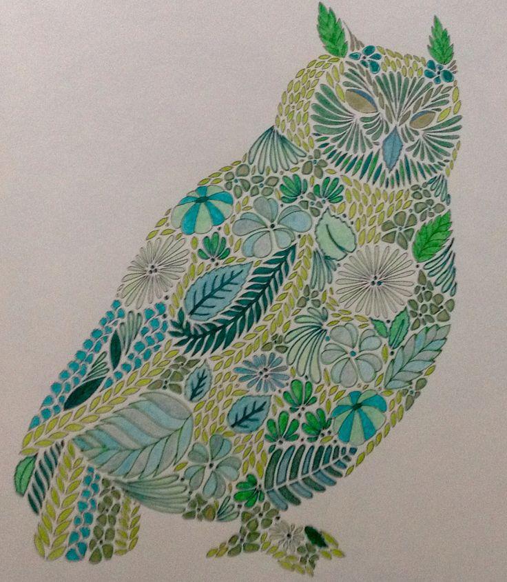 12 Best Images About Dierenrijk Kleurboek On Pinterest