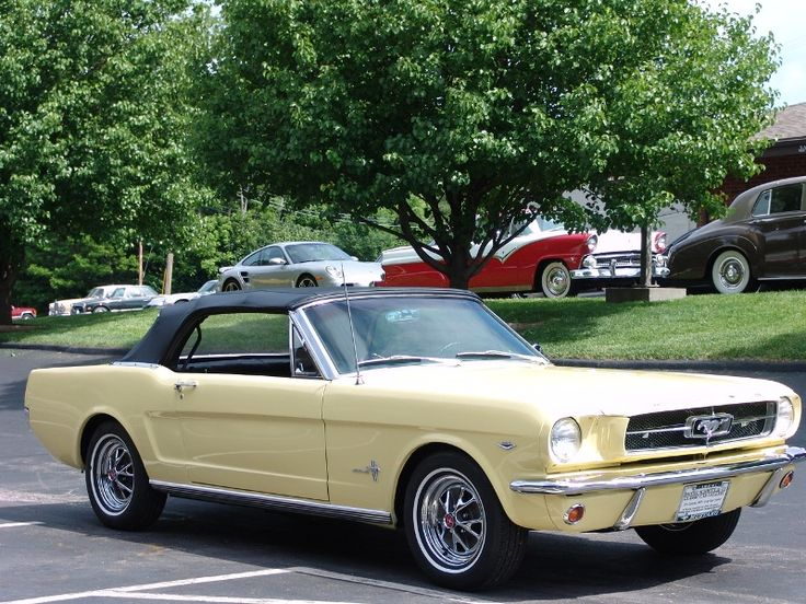 My favorite car: 1964 1/2 Ford Mustang convertible