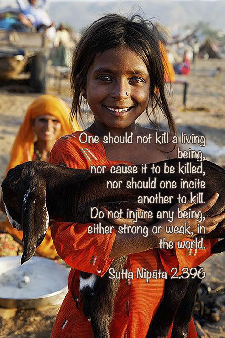 One should not kill a living being, nor cause it to be killed, nor should one incite another to kill. Do not injure any being, either strong or weak, in the world. ♡ Sutta Nipāta 2.396