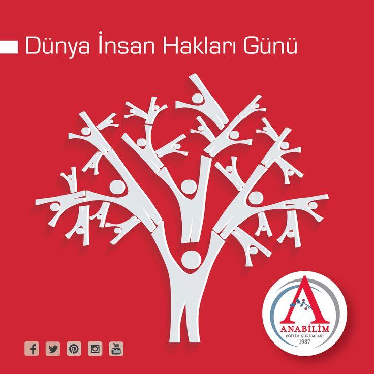 İnsan Hakları; onurlu, eşit ve özgür yaşamaktır.