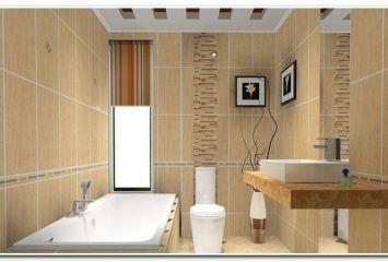 mold-on-bathroom-walls
