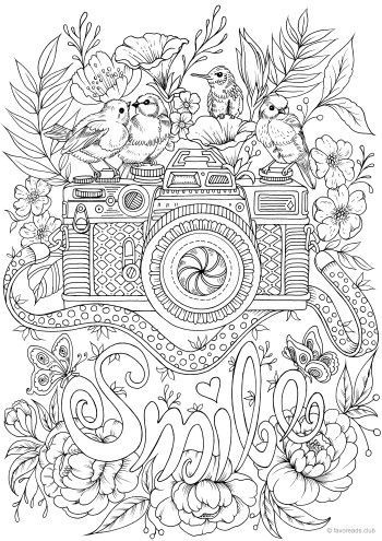 Smile Bright Colors Adult Coloring Book Pages Bird
